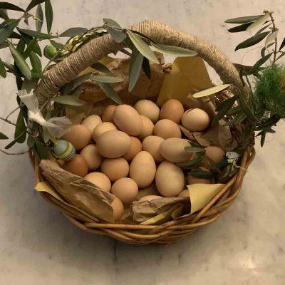 Dieci vini per il pranzo di Pasqua
