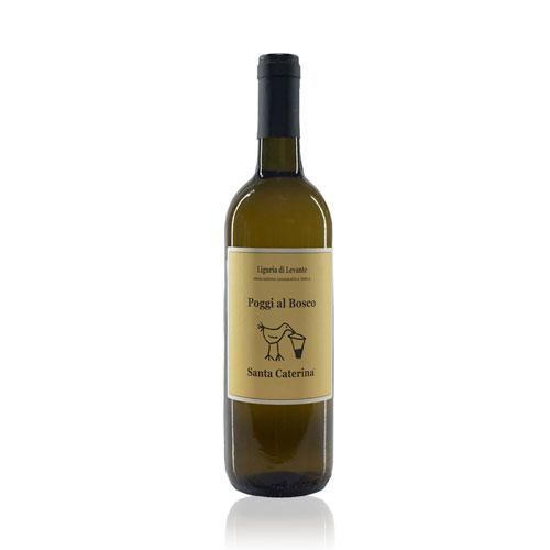 Poggi al Bosco è un vino bianco prodotto con uve 100% albarola coltivate dall'azienda agricola Santa Caterina seguendo le pratiche della viticoltura biodinamica.