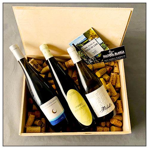 I vini biologici dei Colli di Luni in una confezione regalo. Una cassetta di legno con 3 bottiglie: 1 Falce di Luna Calante dell'azienda agricola La Maestà; 1 I Pilastri bianco dell'azienda agricola Pascale Francesca; 1 Linàro dell'azienda agricola Boriassi